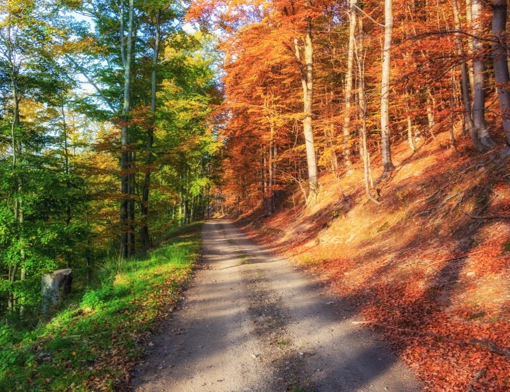 El verano saluda al otoño.