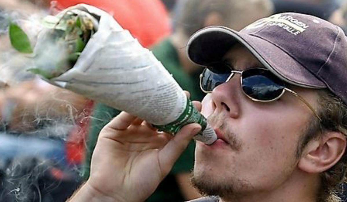 Cannabis y universitarios