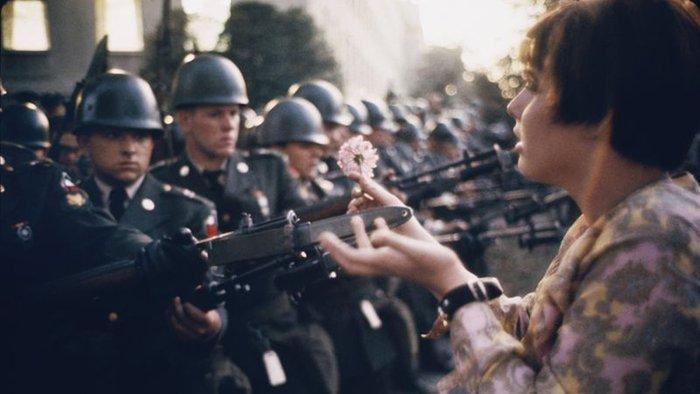 flor a armas en guerra